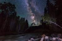 Алтайн хязгаар дахь сая сая одод /фото/
