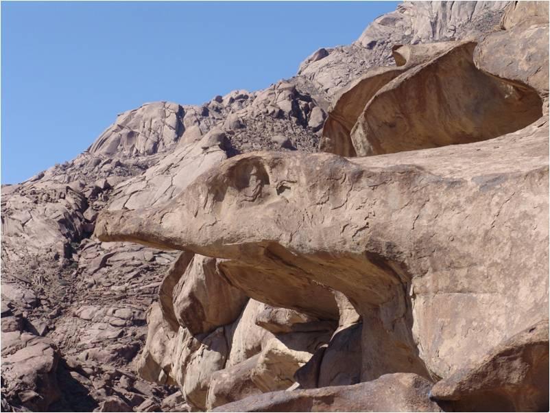 Ламын агуйн зүүн талын гүрвэл хад зурган илэрцүүд
