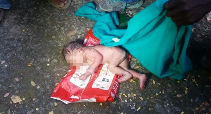 Хогийн саванд хаягдсан охин амьдаараа шоргоолжинд бариулсан байжээ