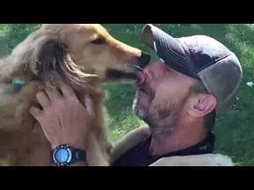 """Аврагдсан нохойгоо авчрахаар 20 цаг """"ухаангүй"""" давхижээ"""