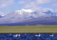 Миний хайртай Монгол орон.../Фото/