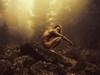 Бүжигчин Ч.Цэнгүүний нүцгэн зураг гадаадын сэтгүүлд тавигджээ