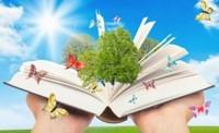 Бестселлер болж буй шилдэг 10 ном