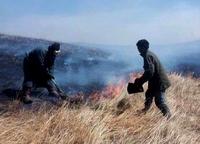 Түмэнцогт суманд түймэр дахин дэгдэж, нутгийн 90 хувь нь галд автлаа