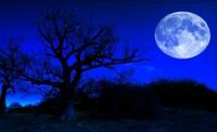 """Өнөө орой """"цэнхэр"""" сар гарна"""