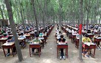 Хятад сурагчид ой модон дунд шалгалт өгчээ
