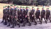 С.Жавхлангийн дууг франц цэргүүд жагсаалд дуулсаар байна