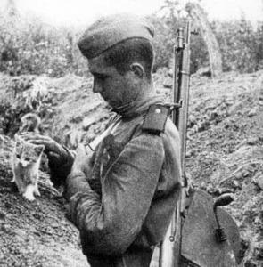 Белоруссийн армид тусладаг байсан Рыжик муур
