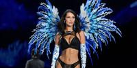Victoria's Secret шоуны үеэр Белла Хадидын хөх ил гарчээ