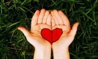 Хайртынхаа нууцыг мэдье гэвэл гарыг нь хар