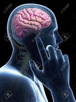 Гар утас тархины хорт хавдар үүсгэдэг үү