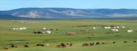 Орон нутагт мал аж ахуй, газар тариаланг түшиглэн эдийн засгаа төрөлжүүлж байна