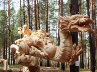 """Монголын """"Дийлдэшгүй өвгөн"""" хүрэл медаль хүртлээ"""